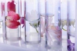 Parfum selbst herstellen