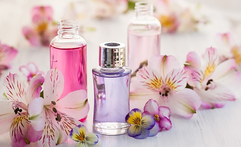 Was bedeutet Fragrance?